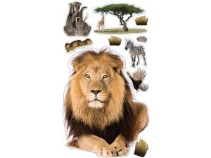 Lion_image_3_large
