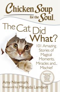 Chicken-Soup-For-The-Soul-My-Cat-Did-What?