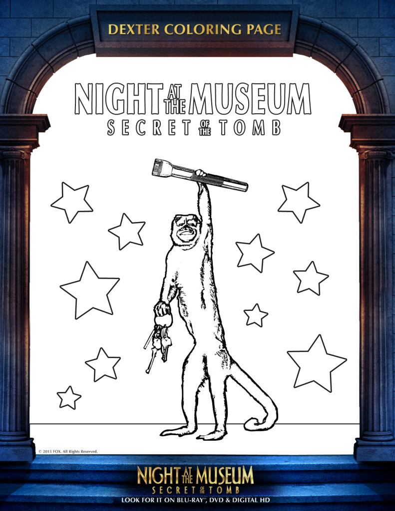 night-at-the-museum-activity